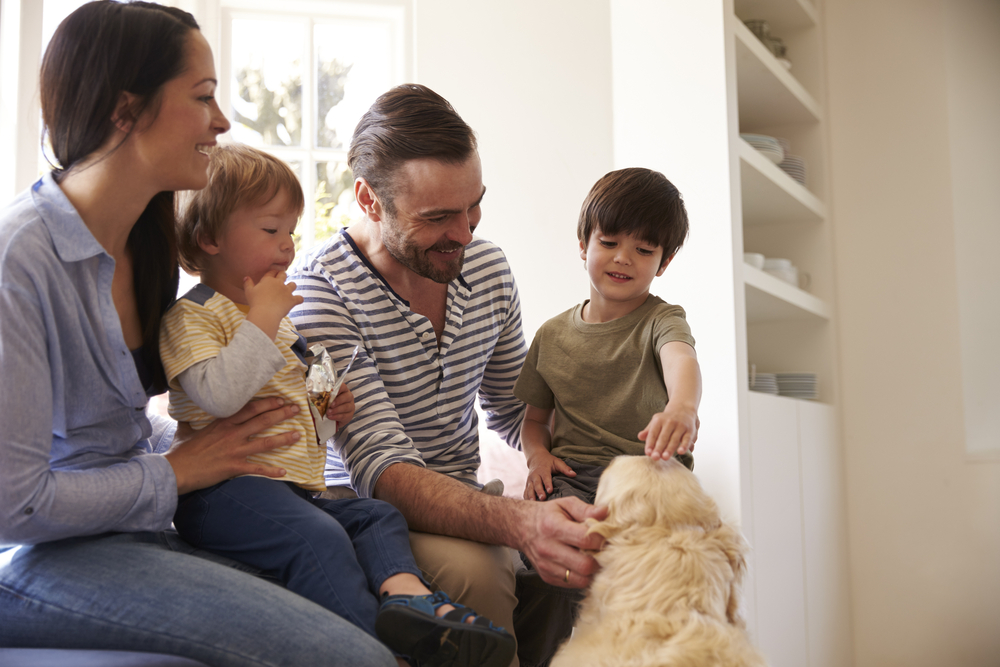 The need for Millennials to have a will or estate planning is greater than ever. It's not the first topic that jumps out in a family discussion, but successful planning leads to a smoother transition for your loved ones during difficult times. Estate planning and wills for Millennials doesn't need to be a difficult thing to discuss. It certainly shouldn't be dismissed at the idea that you don't own anything. In fact, Millennials own more than they think.